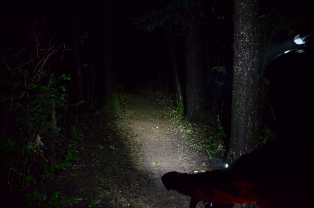 Review Dorcy Led Bicycle Light Mountain Bike For Her