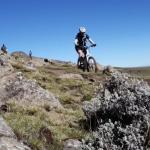 VIDEO: Wild Tracks – Ethiopia